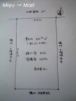 CA391856-2.jpg
