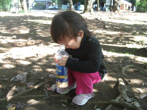 20081101_06.jpg