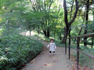 20081113_01.jpg