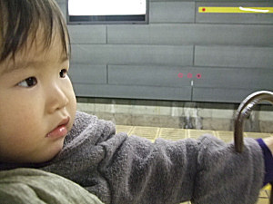 20090130_04.jpg