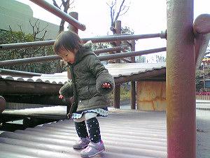 20090205_02.jpg