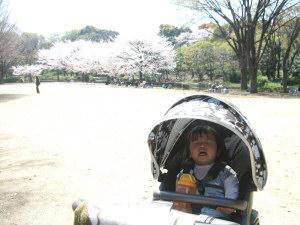 20090409_35.jpg