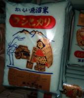 hanegawa4.jpg