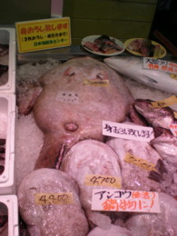 kashiwazaki-sakana2.jpg