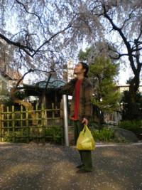 mitaka-zenrinji21.jpg