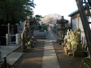 mitaka-zenrinji5.jpg