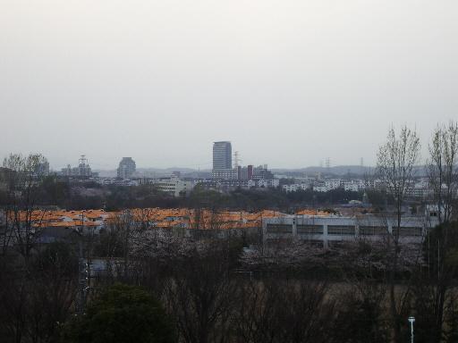 tamashi01.jpg