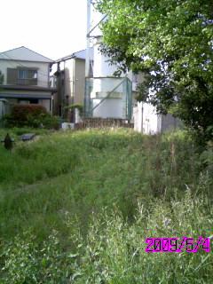 banner_20090505171445.jpg