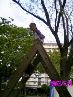 banner_20090505171655.jpg