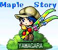 yamagara.png
