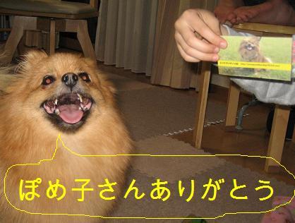 ふぅちゃん名刺3