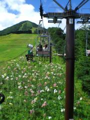 20080816-17_嬬恋 (18)