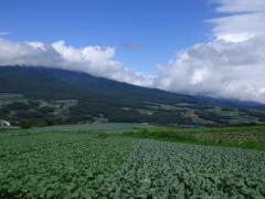 20080816-17_嬬恋 (41)