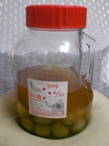梅酒_080912 (1)