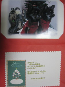 1219 001 可愛いクリスマスカード