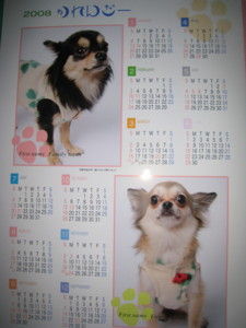 0106 011 ジョイフルで作ってもらったカレンダー