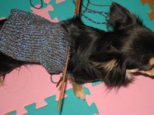 0111 002 上からみた編みかけセーター