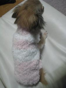 0121 002 ピンクセーターを着て後ろ姿くるみ