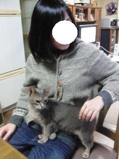 katt4.jpg