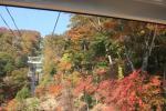 20081015_nasu10.jpg