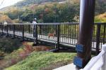 20081015_nasu24.jpg