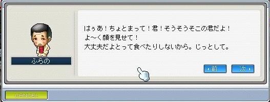 Maple0008_20080831191128.jpg