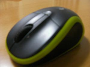 SANY0548_convert_20090622215305.jpg