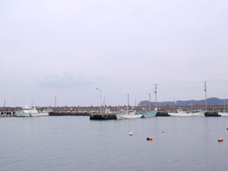 katsuura_marina