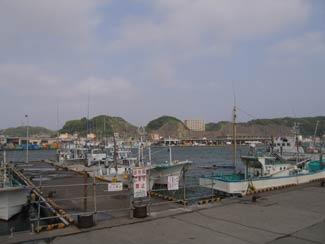 katsuura_marina7
