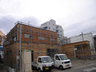shinsyaoku