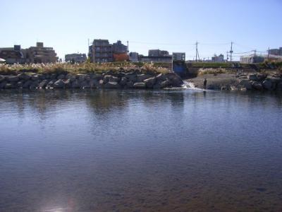 20081122-2