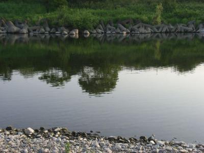 20090502-1