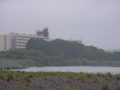 20090606-1