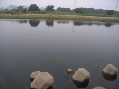 20090613-3