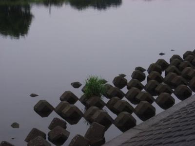20090704-2