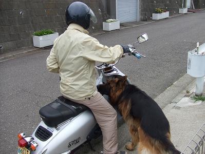 2008_03313月30日 広場・エイちゃん0018