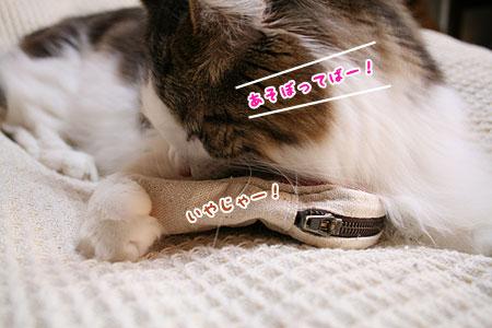20080108100404.jpg