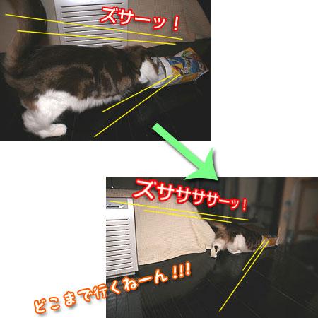 20080114012214.jpg