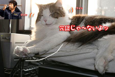 20080126074504.jpg