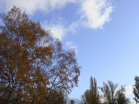 北大秋の空