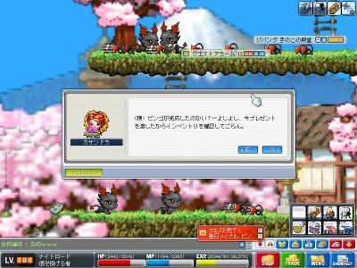 Maple091106_161121.jpg