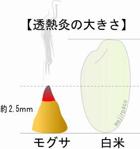 透熱灸 半米粒大 モグサ