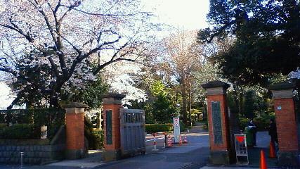 目白桜学習院 正門