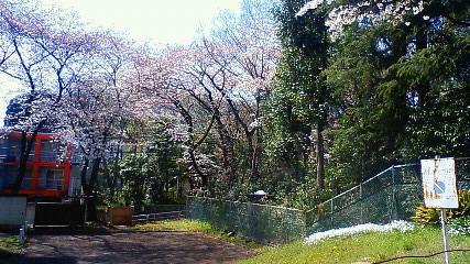 新宿下落合おとめ山公園3