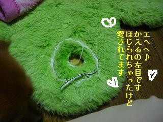 CIMG0073_20080930205301.jpg