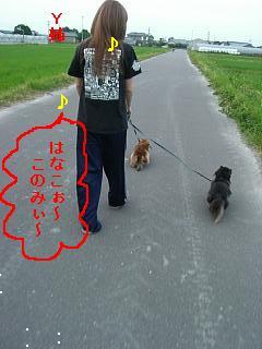 CIMG0149_20090526202939.jpg
