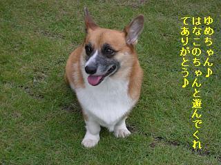 CIMG0151_20081004190514.jpg