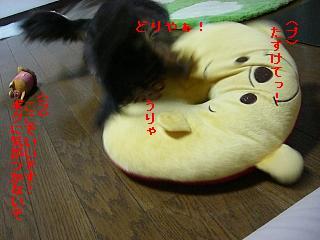 CIMG0287.jpg