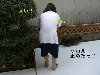 CIMG0334.jpg