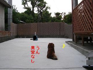 CIMG0357_20090704202604.jpg